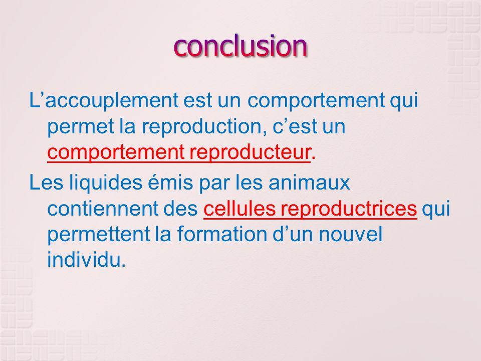 Laccouplement est un comportement qui permet la reproduction, cest un comportement reproducteur. Les liquides émis par les animaux contiennent des cel