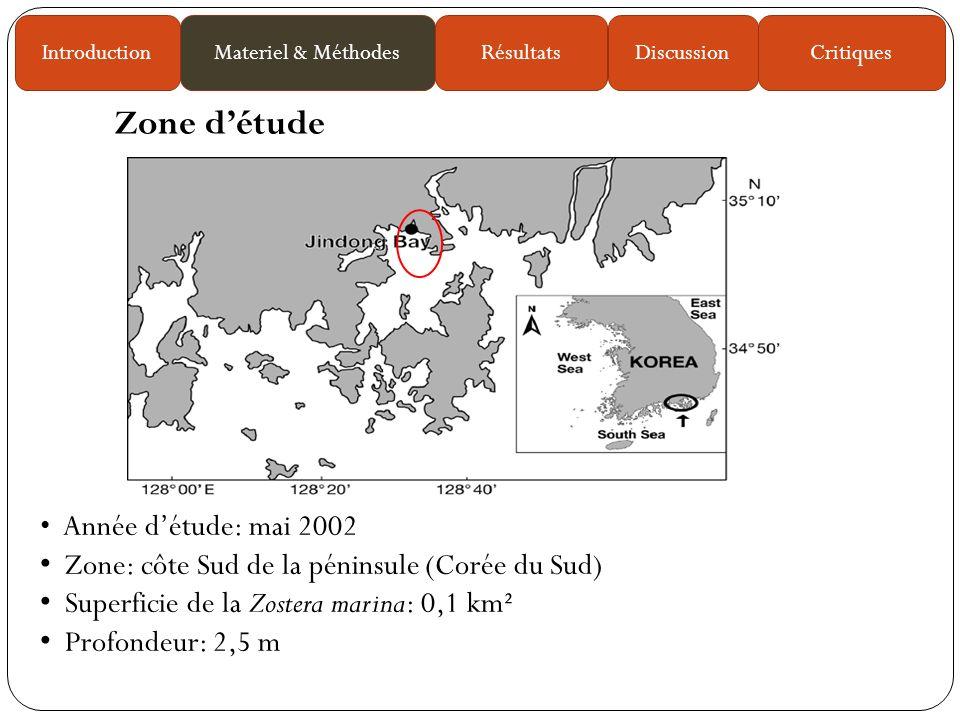 Année détude: mai 2002 Zone: côte Sud de la péninsule (Corée du Sud) Superficie de la Zostera marina: 0,1 km² Profondeur: 2,5 m Zone détude IntroductionMateriel & MéthodesRésultatsDiscussionCritiques