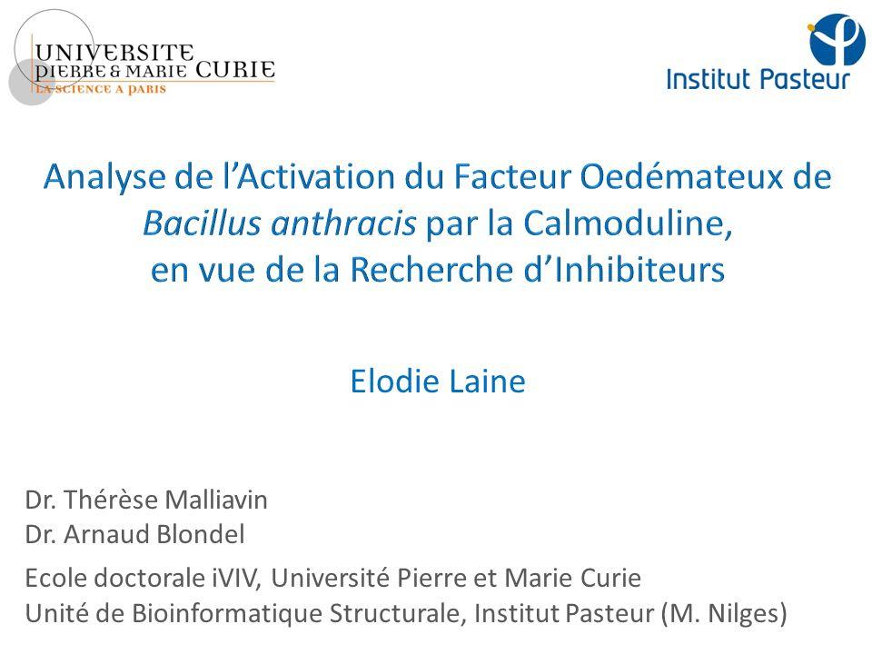 Introduction I.Stabilité de linteraction EF-CaM a.
