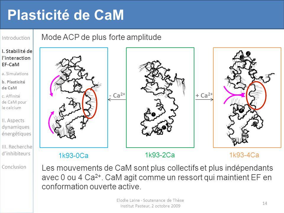 14 Elodie Laine - Soutenance de Thèse Institut Pasteur, 2 octobre 2009 Introduction I.