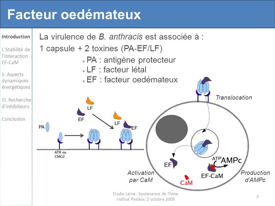 Elodie Laine - Soutenance de Thèse Institut Pasteur, 2 octobre 2009 64 Structural interaction fingerprints