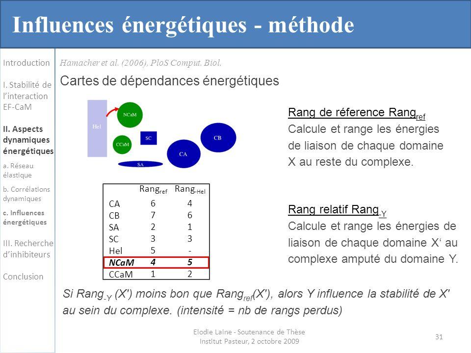 Hamacher et al.(2006), PloS Comput. Biol.
