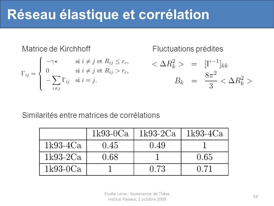 Elodie Laine - Soutenance de Thèse Institut Pasteur, 2 octobre 2009 54 Matrice de KirchhoffFluctuations prédites Réseau élastique et corrélation Similarités entre matrices de corrélations