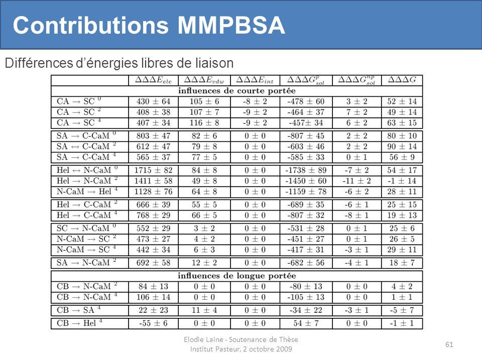 Elodie Laine - Soutenance de Thèse Institut Pasteur, 2 octobre 2009 61 Contributions MMPBSA Différences dénergies libres de liaison