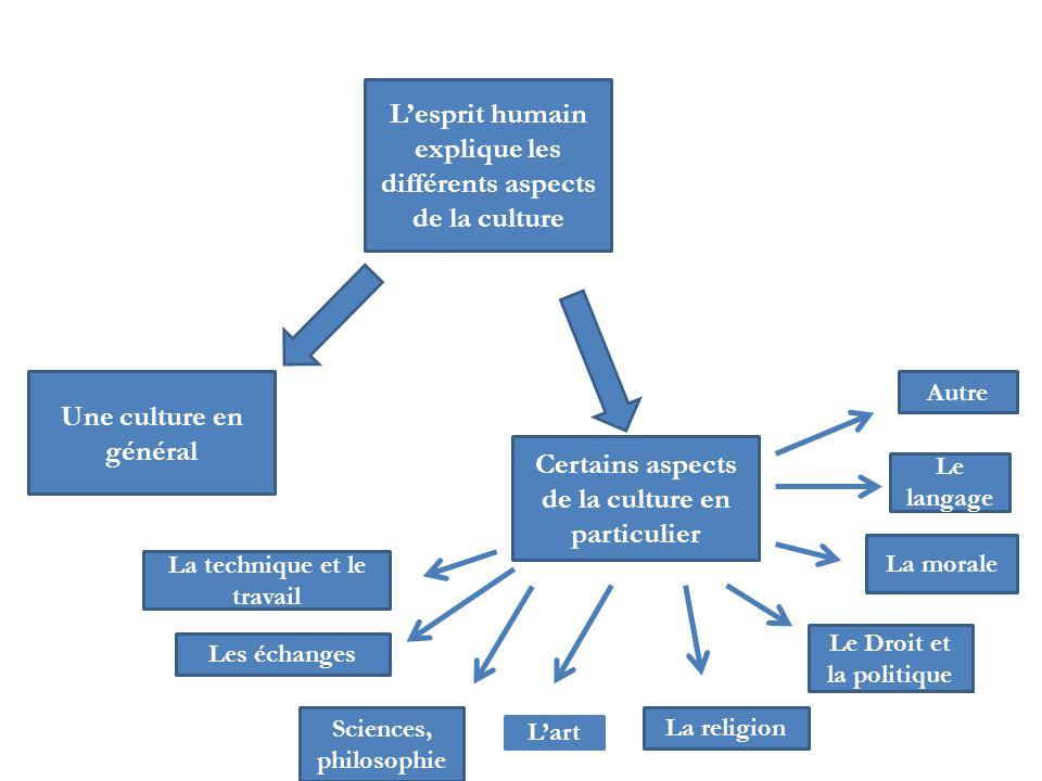Lesprit humain explique les différents aspects de la culture Une culture en général Certains aspects de la culture en particulier La technique et le t