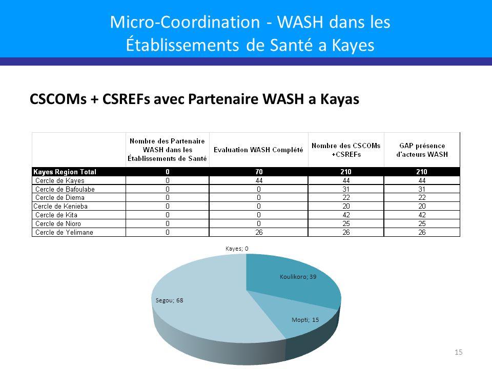 Micro-Coordination - WASH dans les Établissements de Santé a Kayes CSCOMs + CSREFs avec Partenaire WASH a Kayas 15
