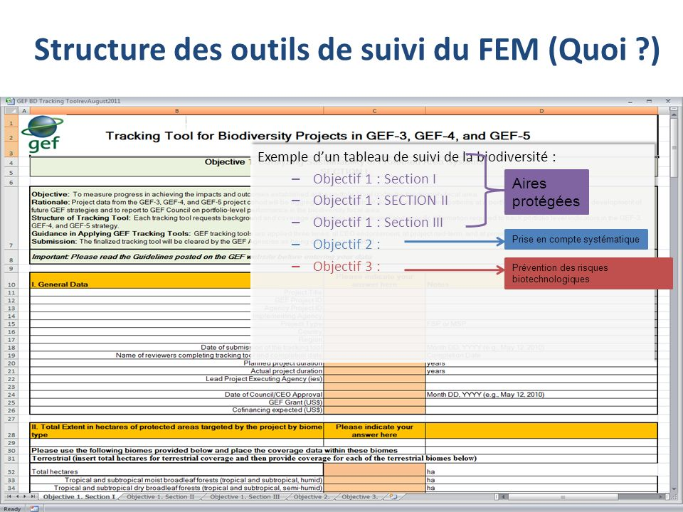 Exemple dun tableau de suivi de la biodiversité : – Objectif 1 : Section I – Objectif 1 : SECTION II – Objectif 1 : Section III – Objectif 2 : – Objectif 3 : Exemple dun tableau de suivi de la biodiversité : – Objectif 1 : Section I – Objectif 1 : SECTION II – Objectif 1 : Section III – Objectif 2 : – Objectif 3 : Aires protégées Prise en compte systématique Prévention des risques biotechnologiques Structure des outils de suivi du FEM (Quoi ?)