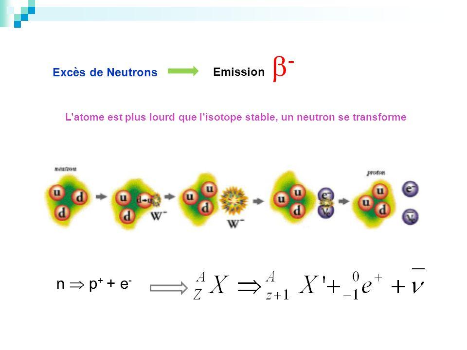 Excès de Neutrons Emission - Latome est plus lourd que lisotope stable, un neutron se transforme n p + + e -
