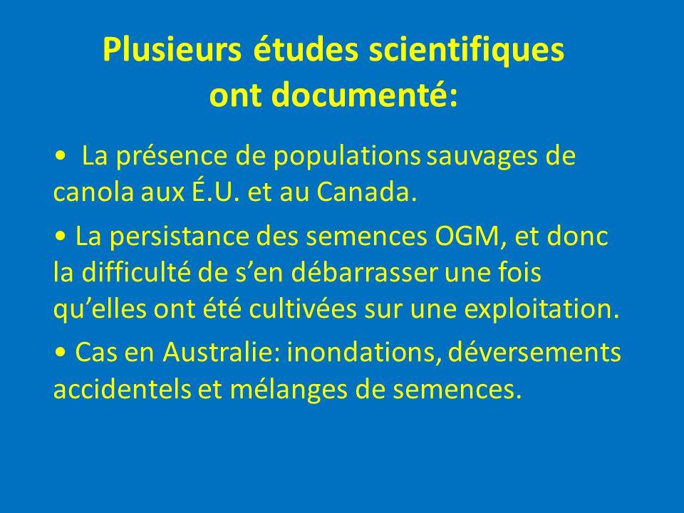 Plusieurs études scientifiques ont documenté: La présence de populations sauvages de canola aux É.U. et au Canada. La persistance des semences OGM, et