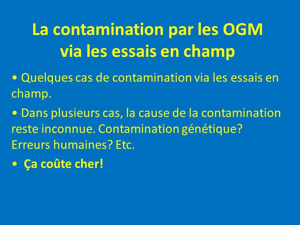 La contamination par les OGM via les essais en champ Quelques cas de contamination via les essais en champ. Dans plusieurs cas, la cause de la contami