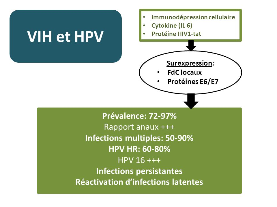 VIH et HPV Prévalence: 72-97% Rapport anaux +++ Infections multiples: 50-90% HPV HR: 60-80% HPV 16 +++ Infections persistantes Réactivation dinfection