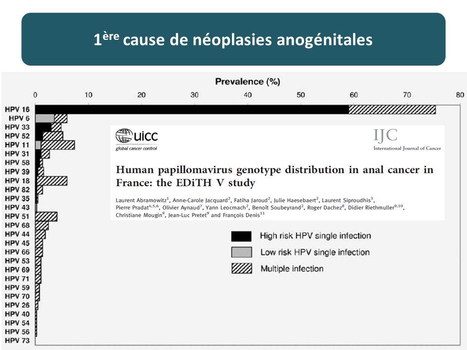 1 ère cause de néoplasies anogénitales