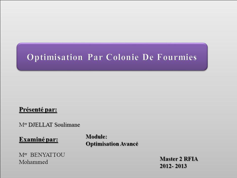 Présenté par: DJELLAT Soulimane M er DJELLAT Soulimane Examiné par: M er BENYATTOU Mohammed Master 2 RFIA 2012- 2013 Module: Optimisation Avancé