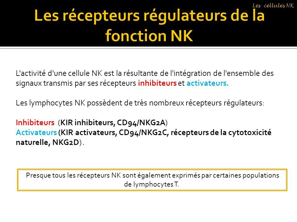 L'activité d'une cellule NK est la résultante de l'intégration de l'ensemble des signaux transmis par ses récepteurs inhibiteurs et activateurs. Les l