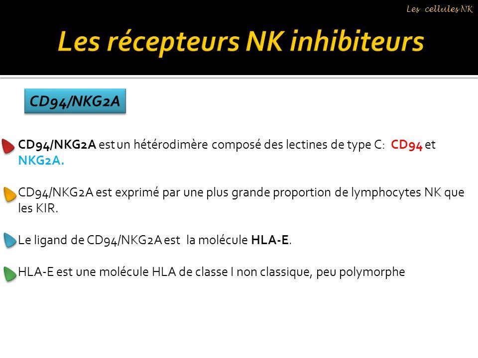 CD94/NKG2A est un hétérodimère composé des lectines de type C: CD94 et NKG2A. CD94/NKG2A est exprimé par une plus grande proportion de lymphocytes NK