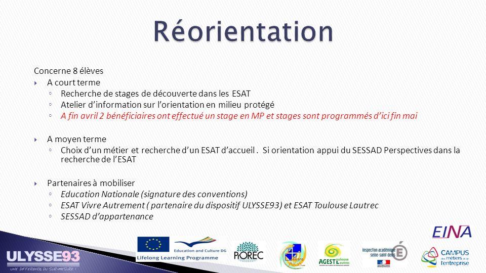 Concerne 8 élèves A court terme Recherche de stages de découverte dans les ESAT Atelier dinformation sur lorientation en milieu protégé A fin avril 2