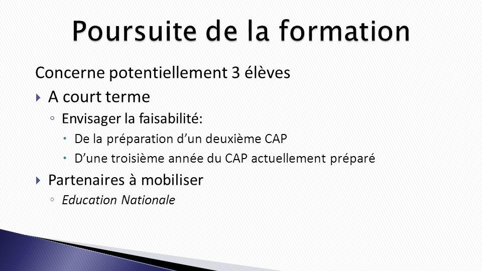 Concerne potentiellement 3 élèves A court terme Envisager la faisabilité: De la préparation dun deuxième CAP Dune troisième année du CAP actuellement