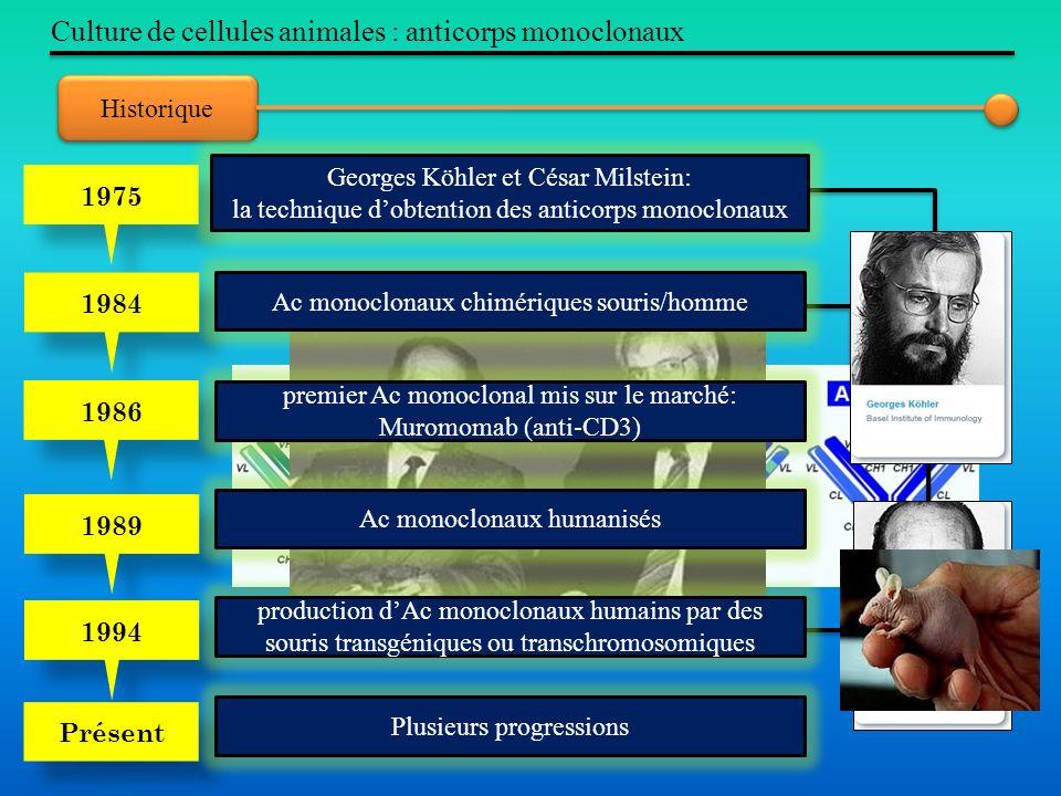 Historique Culture de cellules animales : anticorps monoclonaux 1975 1984 1986 1989 1994 Présent Georges Köhler et César Milstein: la technique dobten