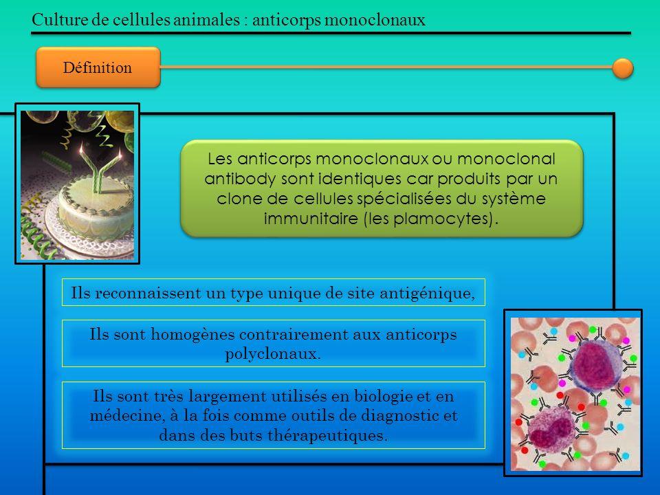 Définition Culture de cellules animales : anticorps monoclonaux Ils sont très largement utilisés en biologie et en médecine, à la fois comme outils de