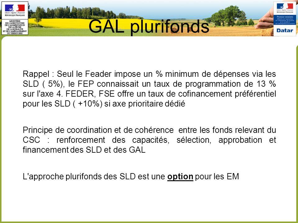 GAL plurifonds Rappel : Seul le Feader impose un % minimum de dépenses via les SLD ( 5%), le FEP connaissait un taux de programmation de 13 % sur l axe 4.