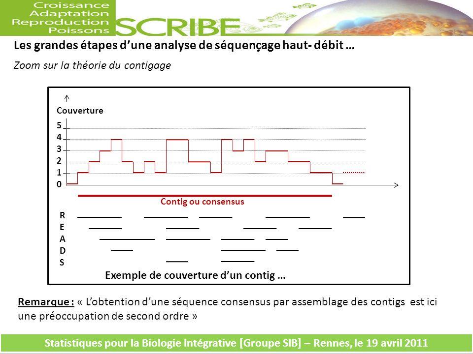 543210543210 READSREADS Couverture Contig ou consensus Exemple de couverture dun contig … Les grandes étapes dune analyse de séquençage haut- débit … Zoom sur la théorie du contigage Statistiques pour la Biologie Intégrative [Groupe SIB] – Rennes, le 19 avril 2011 Remarque : « Lobtention dune séquence consensus par assemblage des contigs est ici une préoccupation de second ordre »