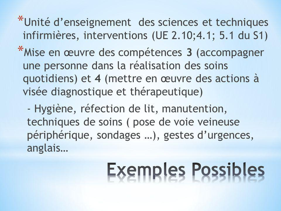 * Unité denseignement des sciences et techniques infirmières, interventions (UE 2.10;4.1; 5.1 du S1) * Mise en œuvre des compétences 3 (accompagner un