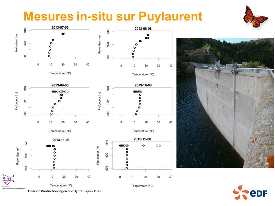 Division Production Ingénierie Hydraulique - DTG Mesures in-situ sur Puylaurent
