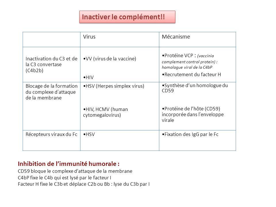 VirusMécanisme Inactivation du C3 et de la C3 convertase (C4b2b) VV (virus de la vaccine) HIV Protéine VCP : (vaccinia complement control protein) : h
