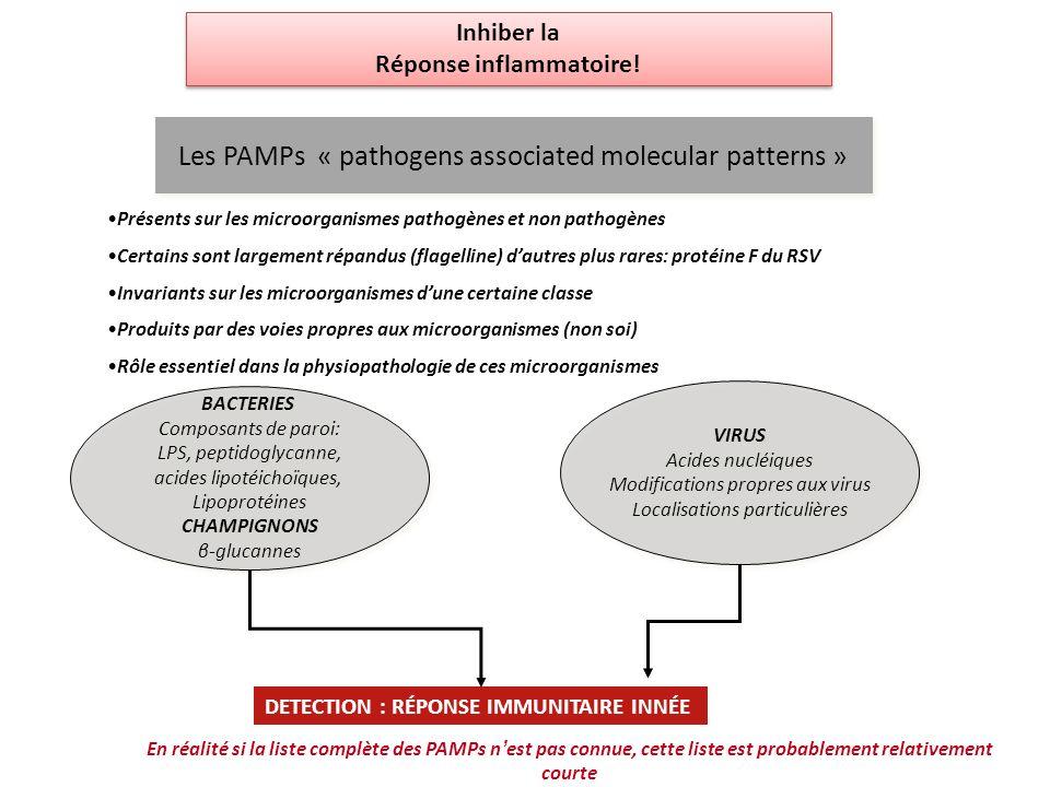 AUTRES MODES DE RECONNAISSANCE -Modifications des protéines de lhôte par des enzymes microbiennes: protéases fungiques qui induisent la production de ligands de TLRs -Production de signaux « danger »: acide urique, HSP70, HMGB1 (high mobility group box 1), tenascine -Diminution de lexpression des molécules du CMH (virus)