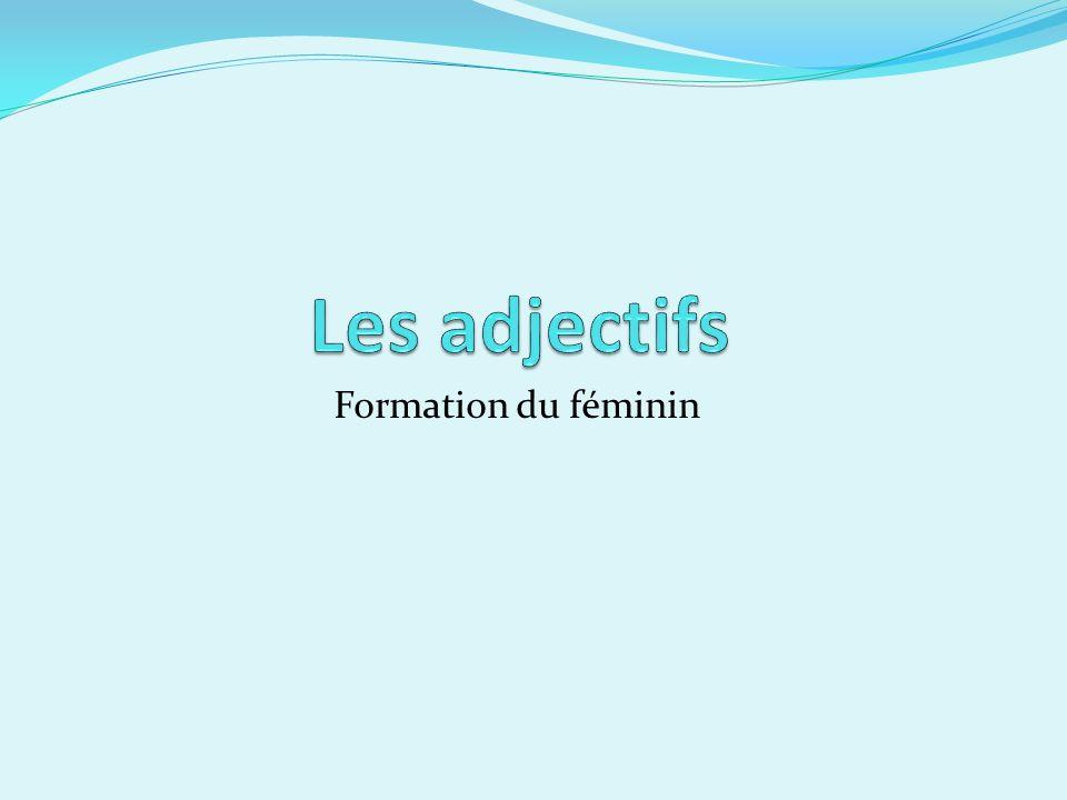 Formation du féminin