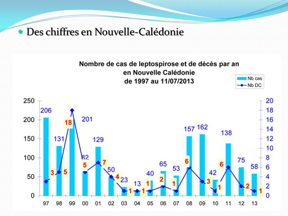 Des chiffres en Nouvelle-Calédonie Des chiffres en Nouvelle-Calédonie