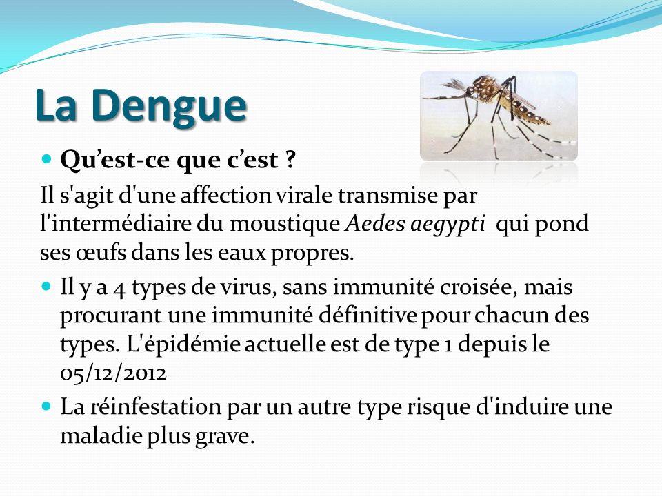 La Dengue Quest-ce que cest ? Il s'agit d'une affection virale transmise par l'intermédiaire du moustique Aedes aegypti qui pond ses œufs dans les eau