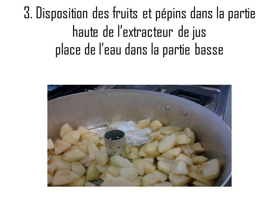 3. Disposition des fruits et pépins dans la partie haute de lextracteur de jus place de leau dans la partie basse