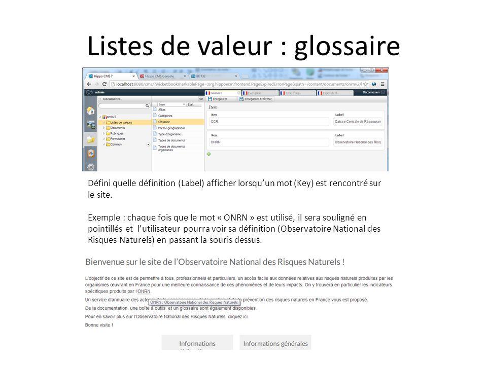 Listes de valeur : glossaire Défini quelle définition (Label) afficher lorsquun mot (Key) est rencontré sur le site.