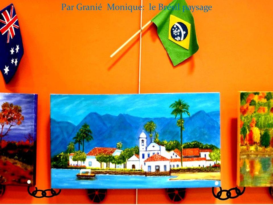 Par Granié Monique: le Brésil paysage