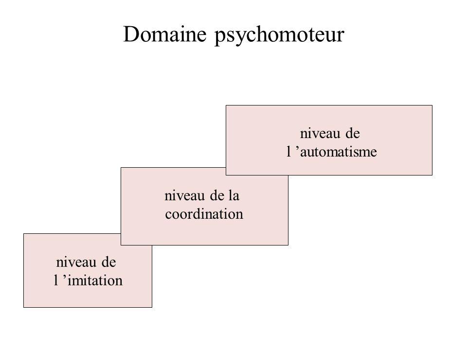 Domaine psychomoteur niveau de l imitation niveau de la coordination niveau de l automatisme