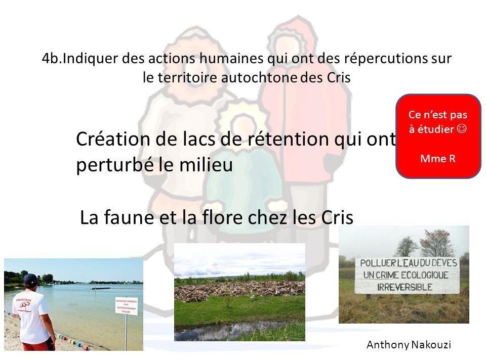 4b.Indiquer des actions humaines qui ont des répercutions sur le territoire autochtone des Cris Anthony Nakouzi Création de lacs de rétention qui ont