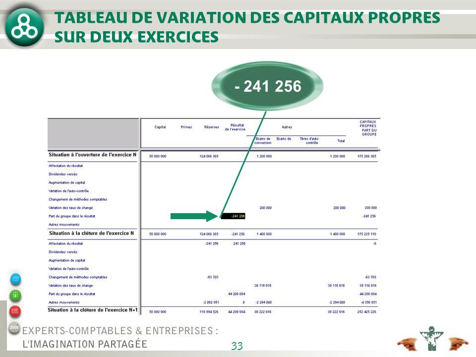 33 TABLEAU DE VARIATION DES CAPITAUX PROPRES SUR DEUX EXERCICES - 241 256