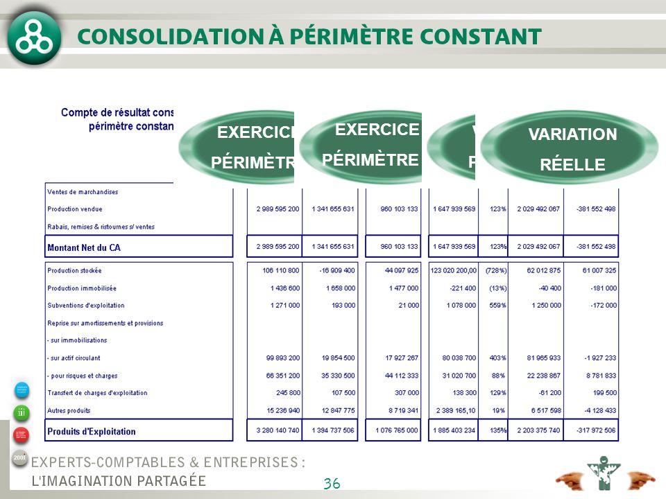 36 CONSOLIDATION À PÉRIMÈTRE CONSTANT EXERCICE N PÉRIMÈTRE N EXERCICE N PÉRIMÈTRE N-1 VARIATION PÉRIMÈTRE VARIATION RÉELLE