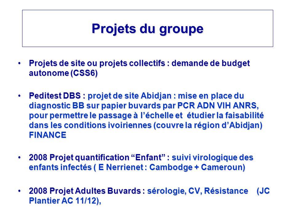 Projets du groupe Projets de site ou projets collectifs : demande de budget autonome (CSS6)Projets de site ou projets collectifs : demande de budget a