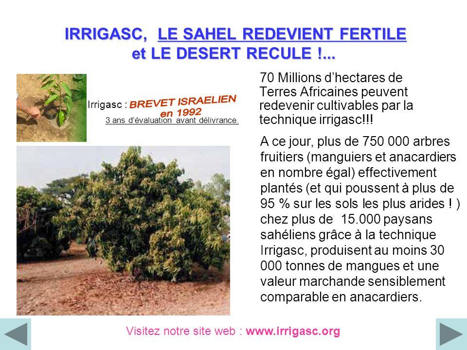 IRRIGASC, LE SAHEL REDEVIENT FERTILE et LE DESERT RECULE !... IRRIGASC, LE SAHEL REDEVIENT FERTILE et LE DESERT RECULE !... 70 Millions dhectares de T