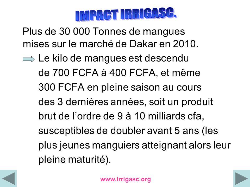 Plus de 30 000 Tonnes de mangues mises sur le marché de Dakar en 2010. Le kilo de mangues est descendu de 700 FCFA à 400 FCFA, et même 300 FCFA en ple