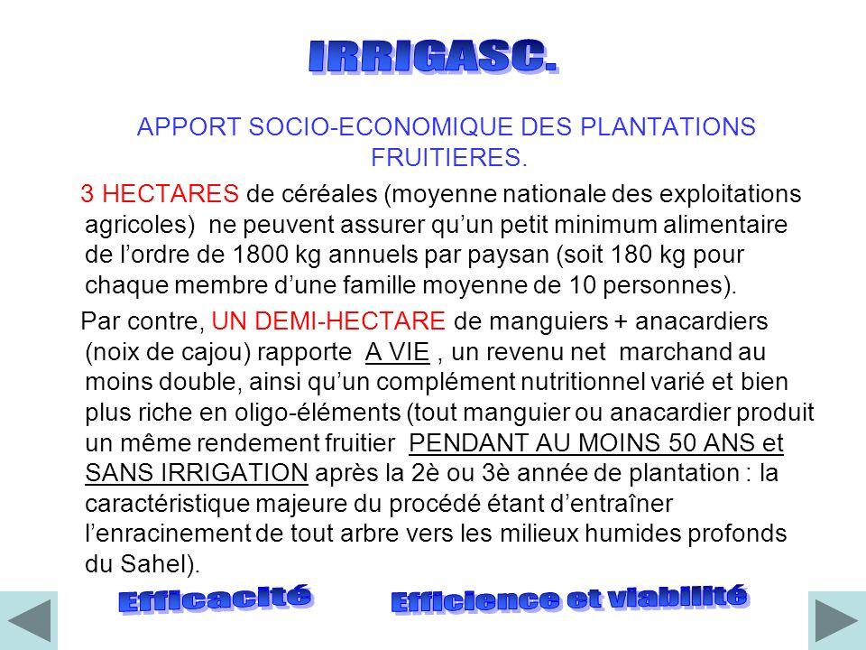 On peut financer au Sahel, chez le plus humble paysan, la plantation de 40 MANGUIERS par le procédé Irrigasc (184 Euros / 4,6 Euros par arbre planté avec sa gaine : prix 2011).