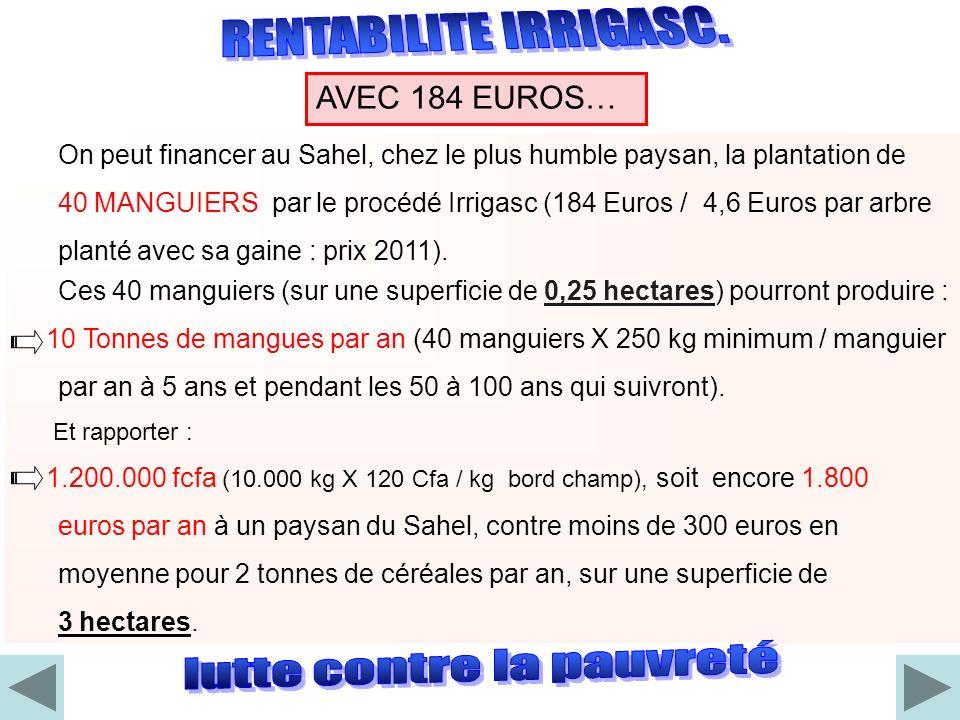 On peut financer au Sahel, chez le plus humble paysan, la plantation de 40 MANGUIERS par le procédé Irrigasc (184 Euros / 4,6 Euros par arbre planté a