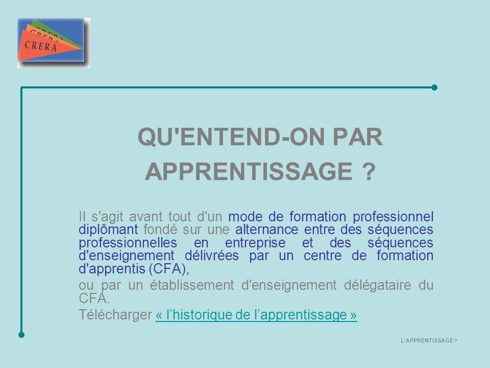 ACTEURS ET PARTENAIRES DE L APPRENTISSAGE L apprentissage est un dispositif de formation très étendu puisqu il recouvre une grande variété de secteurs et de niveaux de formation, allant du CAP au niveau Ingénieur, DESS, etc.