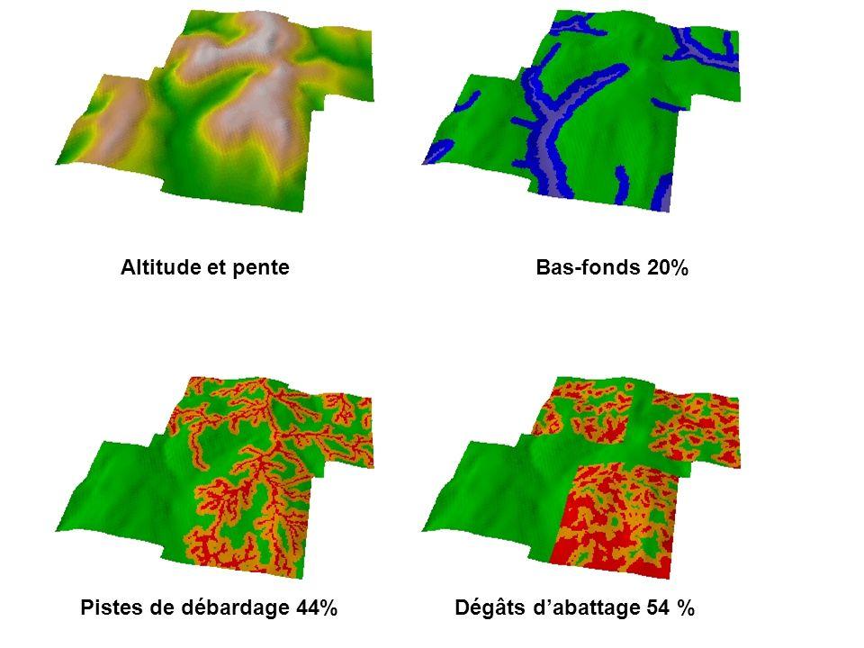 Altitude et penteBas-fonds 20% Pistes de débardage 44%Dégâts dabattage 54 %