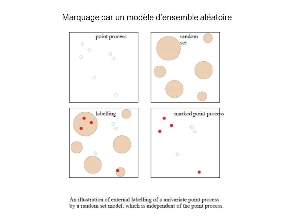 Marquage par un modèle densemble aléatoire