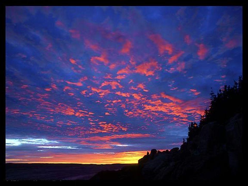 Par la gracieuse hirondelle qui patrouille le ciel et par le bel huard qui glisse sur l'onde, je te bénis, Seigneur.