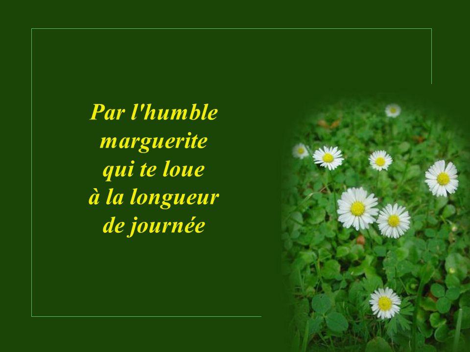 Texte : Jules Beaulac Musique : Rieu_Wie Sjoen Os Linburg Is Présentation : Le Ber rene202@sympatico.ca