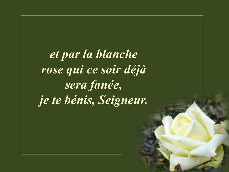 et par la blanche rose qui ce soir déjà sera fanée, je te bénis, Seigneur.